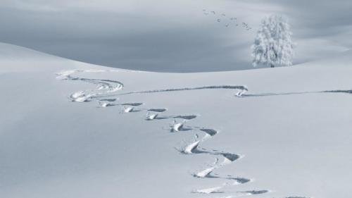 Ski slope for Clark Weeks' Ski Vacation Destinations